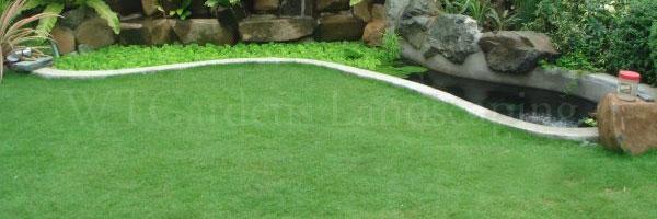 Grass Supply & Installation